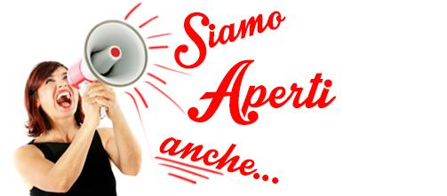 Domenica 19 febbraio il VICE e' APERTO!!!